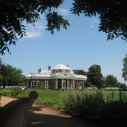 Monticello: A Virginia Native