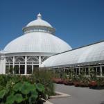 botanical garden 071