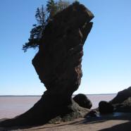 The Flowerpot Rocks