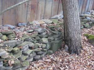 rock wall 013