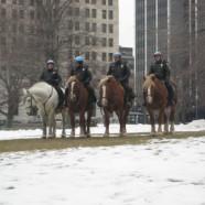 Great Idea: Law on Horseback