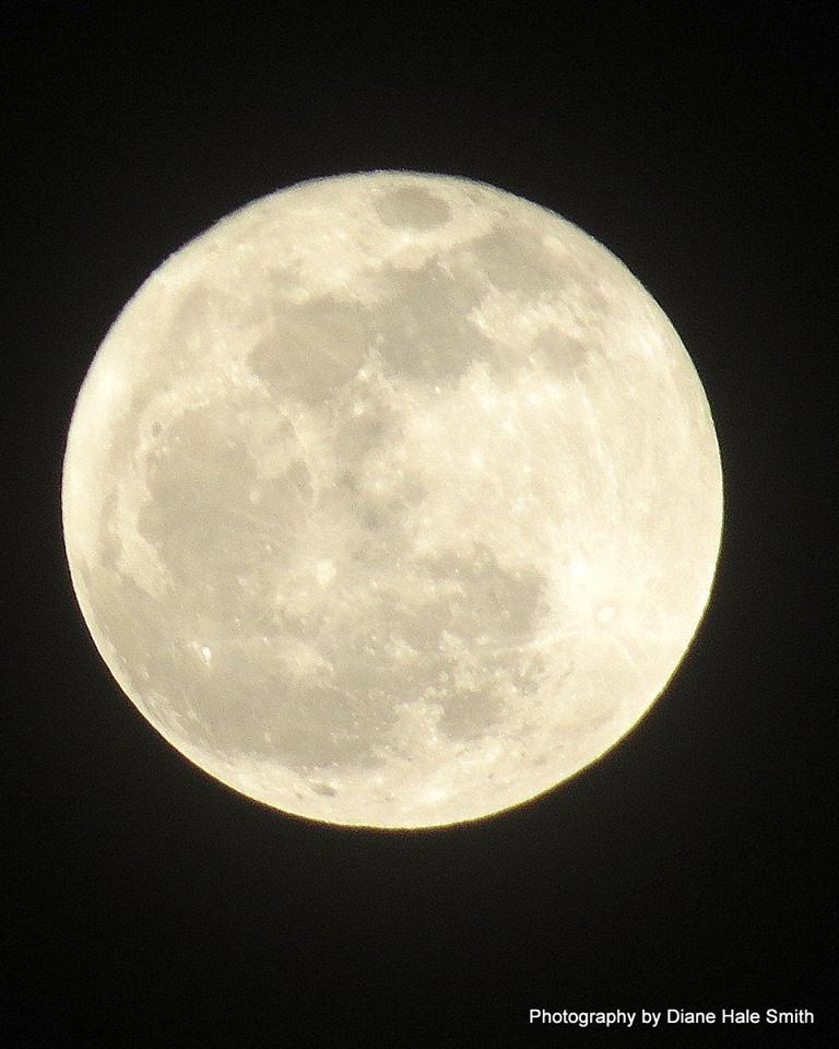 crow moon diane hale smith