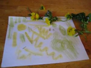 nature's crayons