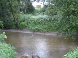 dugout plum creek