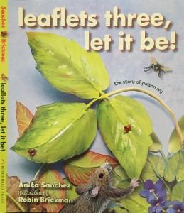 poison ivy leaflets cover