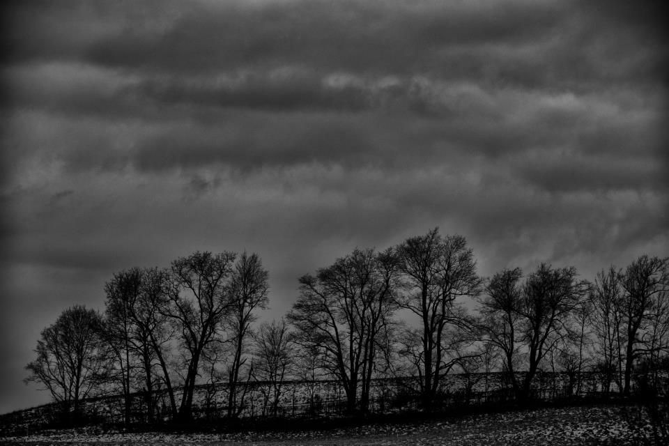 wells-horton-november