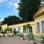 Linnaeus's Garden