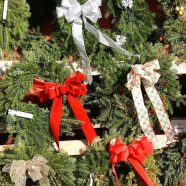 Decking the Halls: A Field Guide