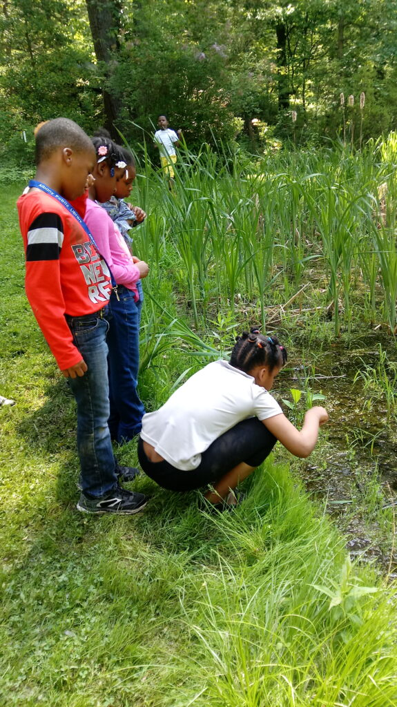 students near pond outdoors study nature